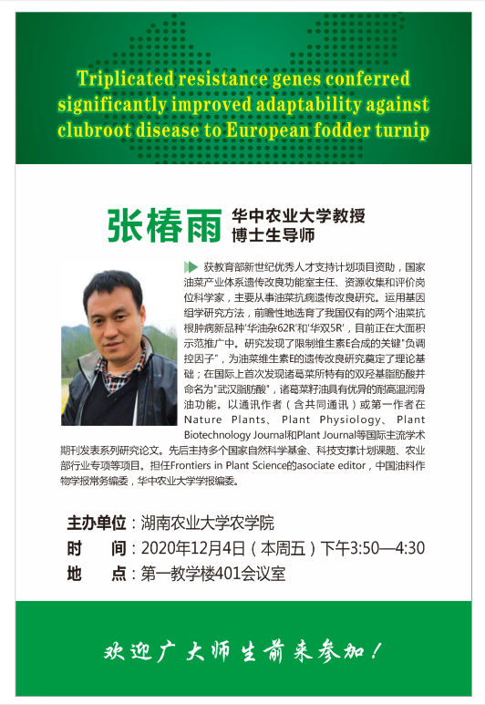 Triplicated resistance genes conferred significantly improved adaptability against clubroot disease to European fodder turnip